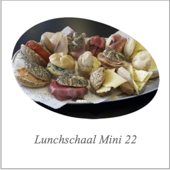 Lunchschaal Mini 22